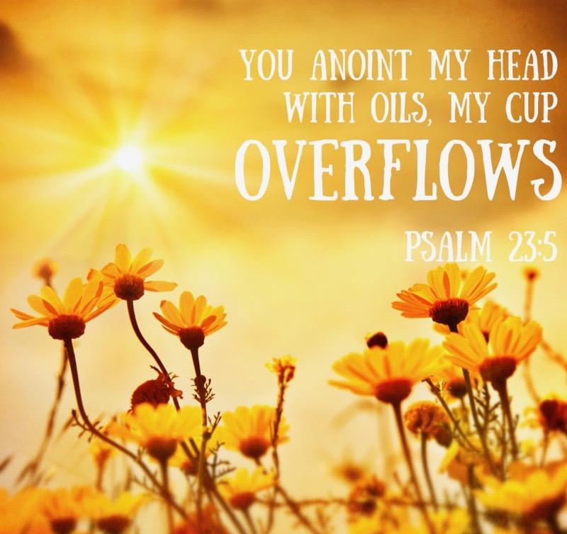 psalm-23-5-400x400-v2